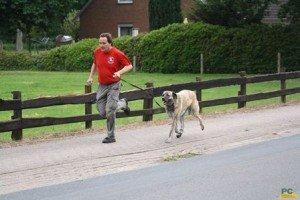 Hundebreitensport-Geländelauf