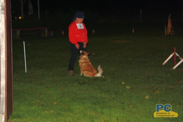 Nachtwettkampf-Hundeverein-Delmenhorst-19-10-2013-6928